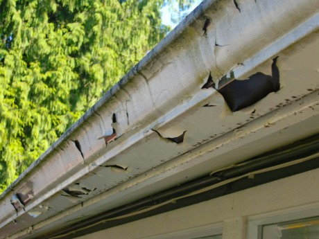 How to Tell If You Need Gutter Repair